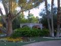alexis_park_all_suite_las_vegas_garden