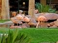flamingo_las_vegas_wildlife_habitat