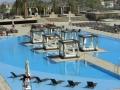 m_resort_las_vegas_pool